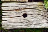 古い木材 — ストック写真