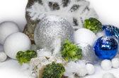 Salo salt stone winter — Stock Photo