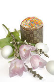 Easter egg cake tulip Salix — Stock Photo