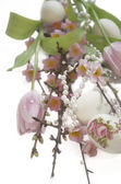 Easter egg tulip Salix sakura pearl — Stock Photo