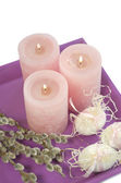 Easter egg candles willow — Stockfoto