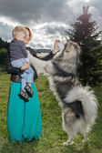 Mother and child playing with dog on nature. — Stock Photo