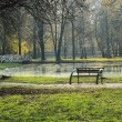 Lake in the park landscape — Foto Stock