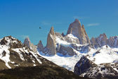 The amazing Fitz Roy — Stock Photo