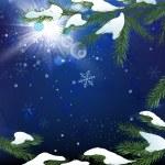 Christmas tree branch snow — Stock Vector