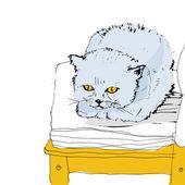 Gato doméstico — Vector de stock