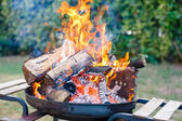 BBQ on the garden — Stock Photo