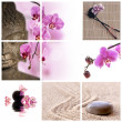 Collage Bouddha zen orchidée rose — Stock Photo
