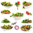 Collection of salads isolated on white Includes green salad — Stock Photo