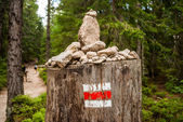 Tourist mark on a stump — Stock fotografie