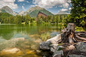 Pond in mountains at summer — Stock Photo