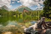 Laghetto in montagna in estate — Foto Stock