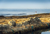 Rocky Coast and See with Fisherman — Stock Photo