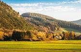 Horská a lesní krajina — Stock fotografie