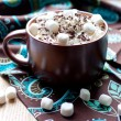 Hot chocolate with marshmallow and whiped cream — Stock Photo