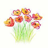 Bouquet of poppies — Stock Vector