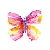 Watercolor butterfly — Stock Photo