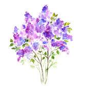 Purple lilac bouquet — Photo
