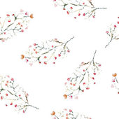 Sacura branches background. — Stock Photo