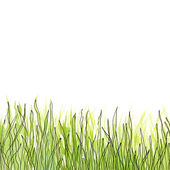 Watercolor green grass — Stock Photo