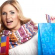Winter and christmas shopping. Woman holding shopping bags — Stock Photo #35594957