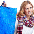 Winter and christmas shopping. Woman holding shopping bags — Stock Photo