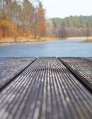 Wood textured backgrounds on the lake in the forest — Stock Photo