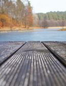 Fondos con textura madera en el lago en el bosque — Foto de Stock