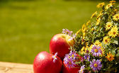 Fresh apples on a table in the garden — Stock fotografie