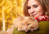 Young girl with cat on natural background  — Stock Photo