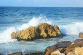 Seashore in Alexandria — Stockfoto