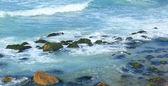Seashore — Stockfoto