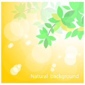 Green leaves on natural background — Stock Vector