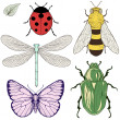 Insects set drawing — Stock Vector