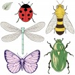 Insects set drawing — Stock Vector #45181911