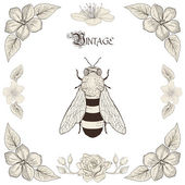 Bee drawing vintage engraving style — Stock Vector