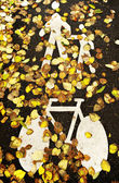 Bicycle And Pedestrian Lane In Autumn — Stock Photo