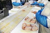 Aves de processamento de carne — Foto Stock