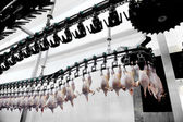 Poultry Meat Processing — Foto Stock