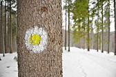 Yellow dot hiking sign on a tree — Stock Photo