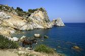 Grekland — Stockfoto