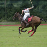 Polo Sport — Stock Photo #35934797