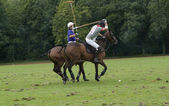 Polo sport — Stock fotografie
