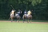 Polo Sport — Stock Photo