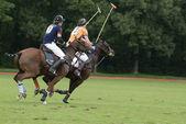 Esporte de polo — Foto Stock