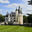 France, Loire Valley — Stock Photo #40540119