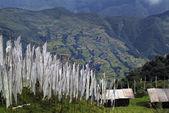 Bhutan, Trashigang — Stock Photo
