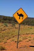Australia, outback — Stock Photo