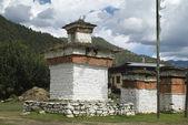 Bután, paro — Foto de Stock