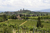 Itálie, Toskánsko — Stock fotografie